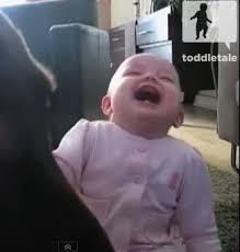 Laughing Baby Meme - hysterical laughing meme 28 images ban appeal laughing memes