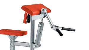 biceps and triceps xt1130
