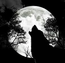 the wolf moon 9th january 12 lost in a daydream