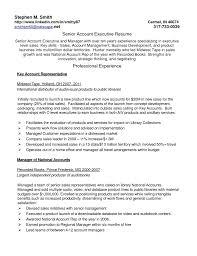 resume computer skills sles resume key europe tripsleep co