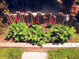 vegetable garden for small spaces using your fence for veggies my urban garden oasis