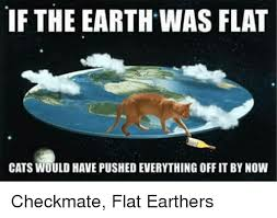 Earth Meme - if the earth was flat cats would have pushed everything off