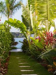tropical garden ideas tropical hawaii garden patio landscape ideas style garden ideas