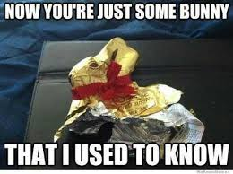 Chocolate Bunny Meme - 15 best memes easter images on pinterest funny stuff jokes and