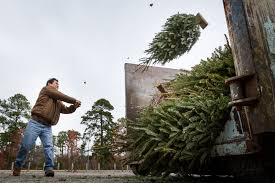 where you can recycle christmas trees in north texas home