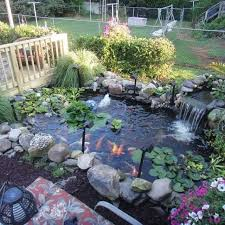 the 25 best coy pond ideas on pinterest koi ponds water
