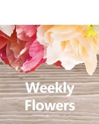 flower subscription weekly flower subscription in ny marine florists