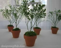 design megillah miniature tree place setting