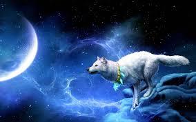 imagenes de fondo de pantalla lobos fondo pantalla fantasía lobo y luna