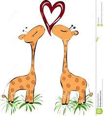 kissing giraffes heart royalty free stock image image 36354456
