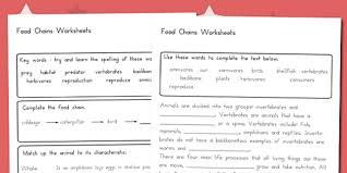 food chain worksheet australia food chain food chain