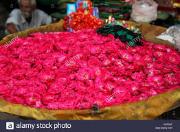 Roses For Sale Red Roses For Sale Ajmer Street Market Rajasthan India Stock