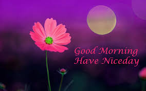 651 best good morning images quotes wallpapers for whatsapp