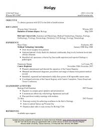 Cfo Resume Sample by Examples Of Resumes Resume Great Objectives Intended For 81