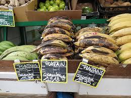 cuisiner des bananes cuisiner la banane plantain bananes plantain 2 hd wallpaper