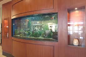 Wall Aquarium by Super Custom