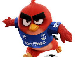 angry birds angers everton football fans