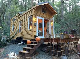 year one in our tiny house a reflection simple hedgehog