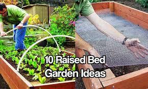 Raised Gardens Ideas Raised Bed Garden Ideas White Bed