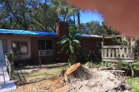 fundraiser by tallie woods wanzo roof repair and tree removal