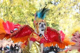 Mayan Halloween Costume Amazing Costumes Thompkins Square Dog Parade Neatorama