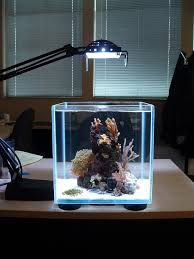 small lighting aquarium design image photos pictures ideas