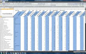 Spreadsheet Definition Team Beachbody Nutrition And P90x Spreadsheet Makes Dieting