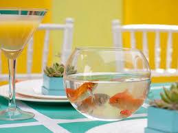 the 25 best goldfish centerpiece ideas on pinterest fish