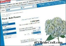 Bulk Hydrangeas Bulk Wedding Flowers