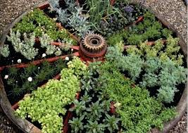 Ideas For Herb Garden Herb Garden Design Plans Hydraz Club
