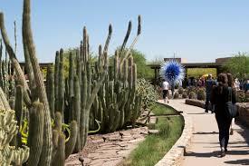 Desert Botanical Garden Restaurant Photos The Luminary
