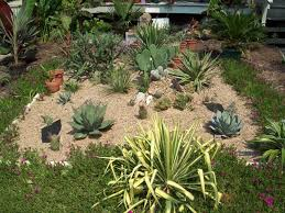 Cactus Garden Ideas Cactus Garden Designs Interior Design Ideas