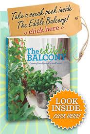 the edible the edible balcony home