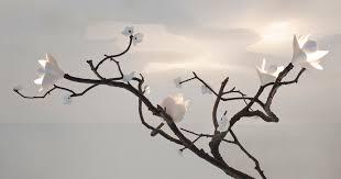 branch chandelier branch chandelier david wiseman