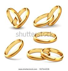 with wedding rings gold wedding rings stock vector 557544538