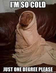 So Cold Meme - i m so cold just one degree please dog in blanket meme generator