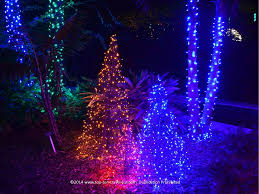 attraction of the week florida botanical gardens lights