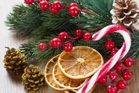 christmas tree decorations with dried orange slices holly berries
