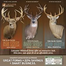 taxidermy super store developed for us by aubrey young who has 30 years of tanning experience in the taxidermy industry testimonials from named taxidermist