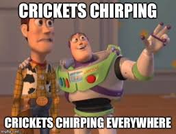 Crickets Chirping Meme - x x everywhere meme imgflip
