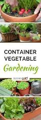 Vegetable Container Gardens Container Vegetable Gardening Grow More Veggies In Small Gardens