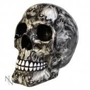 skull ornaments homeware buy from fishpond co nz