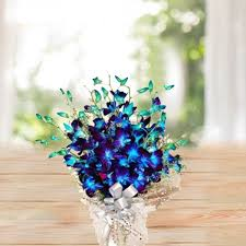 blue orchid flower blue orchid bouquet orchid flower delivery shopcrazzy