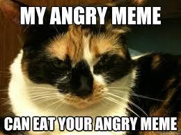 Angry Meme Cat - angry cat memes quickmeme