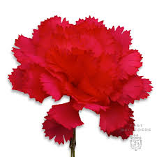 Lapel Flowers Red Carnation Boutonniere Life Size Lapel Flower Fort Belvedere