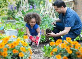 spring garden family practice magical gardening