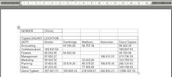 Excel Pivot Table Template Pivot Table With Vba Merkez Advanced Ms Excel Tutorials And