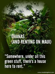 Craigslist Rentals Kauai by Maui Jungalow Ohanas And Other Rental Experiences