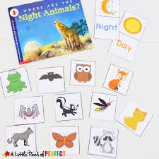 learning about nocturnal animals free printable activities