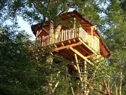 chambre d hote cabane dans les arbres une nuit en cabane tout confort avec spa au coeur d une propriété de